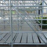 Wholesale Steel Galvanized Layher Allround Scaffolding Ringlock System Scaffold