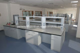 Chemical Resistsnt Steel Lab Furniture with Good Quality