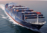 International&Cheap Sea Shipping Agent From China to Alexandria/Egypt