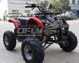 Zhejiang OEM Cheap Kids ATV 110cc