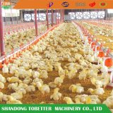 Manufacturer Poultry Farm Equipment Floor Feeding System with High Quality
