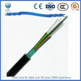 Indoor Outdoor Armored SC/PC Fiber Optic Cable Patch Cord with Sc FC St Connectors