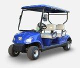 Professional Transportation Electric Mini Vehicle