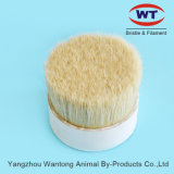 Top Quality Chungking 60~90%Tops Natural White Boiled Pig Bristle