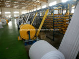 PP Woven Geotextile/Anti Weed Mat