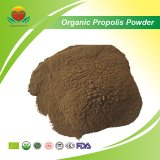 Manufacture Supply Organic Crude Propolis