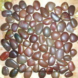 Red Natural Pebble Tile for Decoration