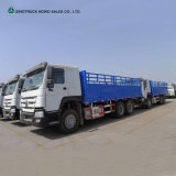 HOWO 10 Ton Lorry Truck for Sale