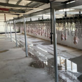 Chicken Line Poultry Plucker Slaughtering Defeathering Production Processing Killing for Sale Halal Slaughter Machine