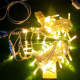 36V LED Christmas Multicolour Outdoor Decoration String Light