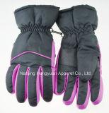 Waterproof Winter Warm Moto Work Gloves (hy17111001)