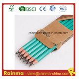 Eco Friendly Hb Plastic Pencil for School Stationery