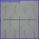 USA Standard Stucco Hexagonal Wire Netting