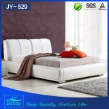 Modern Design Low Bed From China