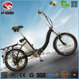 En15194 250W Electric Folding Bike Gift to Child