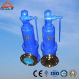 DIN Ari GS-C25 Steam Safety Relif Valve (GA900)