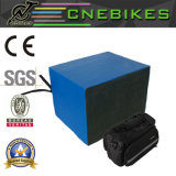 Rack Type 48V 20ah LiFePO4 Battery for Electric Bike