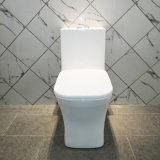 Amt1204 Ce Certified One Piece Water Saving Sanitary Ware