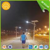 80W Solar Street LED Lamp with Good Price