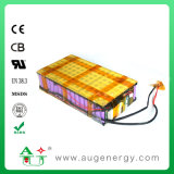 Electric Vehicle Lithium Ion Battery Pack