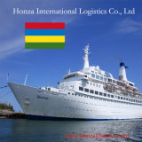 Sea Shipping From Shenzhen or Shanghai to Port Louis of Mauritius