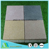 Industrial Ceramic Brick/Tile with Strong Water Absorbing Capacity for Driveway