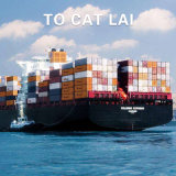 Shipping Forwarding Logistics Service From Guangzhou to Cat Lai/Ho Chi Ming