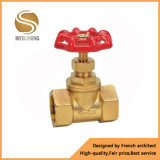 Pn16 Brass Globe Valve with NPT BSPT Screw Thread