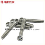 Stainless Steel Lifting Eye Screw Eye Bolt DIN 444