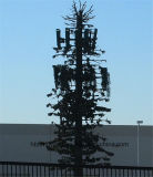 Custom-Made Palm/Pine Tube Telecom Tower