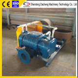 Dsr300AG Wholesale Customized Good Quality Oxygenation Roots Blower