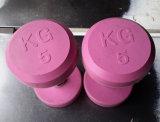 A cores de alta qualidade com revestimento de borracha Haltere (SA03-A)
