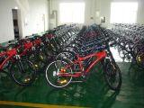 Vélo de montagne électrique (HQL-EMB04)