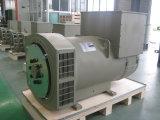 中国の三相ブラシレス同期発電機320kw/400kVA (JDG314F)