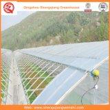 日よけシステムが付いている花またはフルーツまたは野菜栽培のプラスチックフィルムの温室