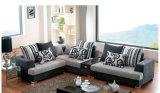 Freizeit Sofa mit Drawer (F6782)