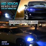 차에 의하여 숨겨지은 빛 35W 크세논 H4 H7 H1 H3 H8 H9 H10 H11 880를 881 H27이라고 9003 9005 9006 Hb2 Hb3 Hb4 최고 가격 차에 의하여 숨겨지은 크세논 빛 새로운 숨겨지은 가벼운 장비 사십시오