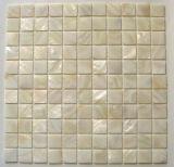 Cor Natural Mosaico Mosaico Shell (CMS005)