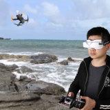 Migliori occhiali di protezione senza fili di Flysight 3D/2D Fpv con DVR