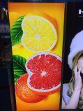 Tela Backlit impressão de venda quente de Digitas do Sublimation