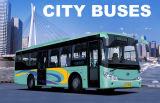 CNGバス、LPGバス