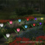 Luz colorida psta solar da flor do jardim (RS101)
