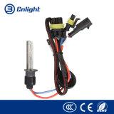 Las bombillas OCULTADAS automotoras del halógeno del automóvil 12V de Cnlight 35W 55W del reemplazo del vehículo auto de los bulbos, los kits ligeros de encargo OCULTARON el bulbo del xenón