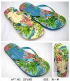 Пляж тапочки PE/PVC/TPR/EVA благоухающем курорте обувь Flip флопа (22FL908)