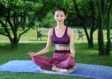 Mat van de Yoga Mandala van het natuurlijke Rubber de Milieuvriendelijke Biologisch afbreekbare
