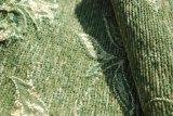 Tessuto da arredamento verde del Chenille da qualità più poco costosa