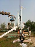 10kw 20kw 30kw 50kw 100kw van de Generator van de Macht van de Turbine van de Wind van het Systeem van het Net