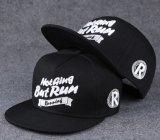 3D 자수를 가진 새로운 형식 6 위원회 Snapback 모자