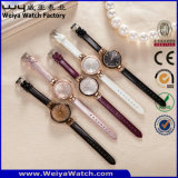 Reloj de señoras caliente del cuarzo de la correa de cuero de la venta de OEM/ODM (Wy-100E)