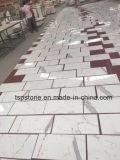 Populaire pour les carreaux de dalle de marbre gris/PLANCHER/Flooring/Paving/mur/projet salle de bains